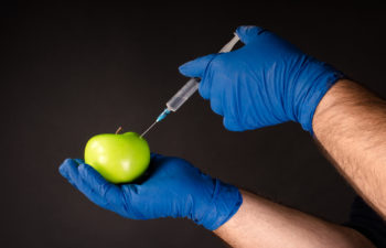 Hands in blue gloves, injecting the fluid from the syringe into the fruit, genetically modified engineering, GMO